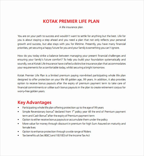 10 Year Life Plan Template Fresh Sample Life Plan Template 9 Free Documents In Pdf