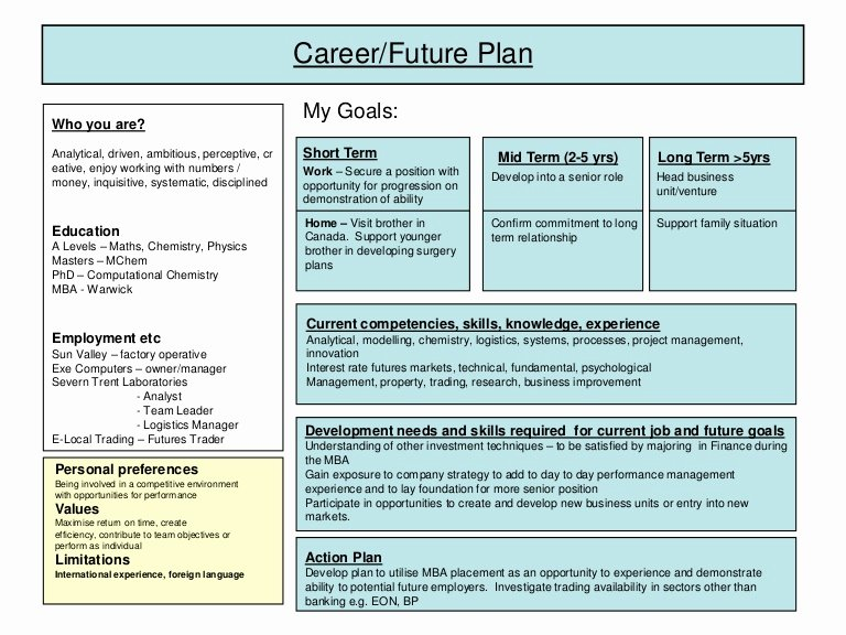 10 Year Plan Template Lovely Career Plan Example