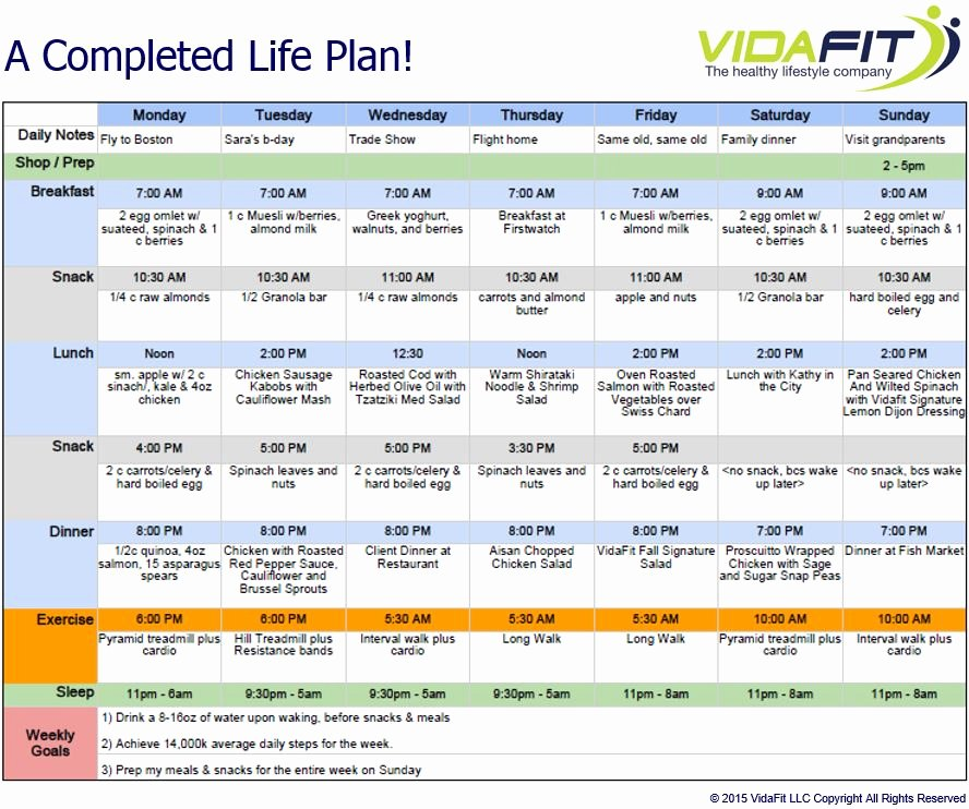 10 Year Plan Template Luxury Life Plan Template