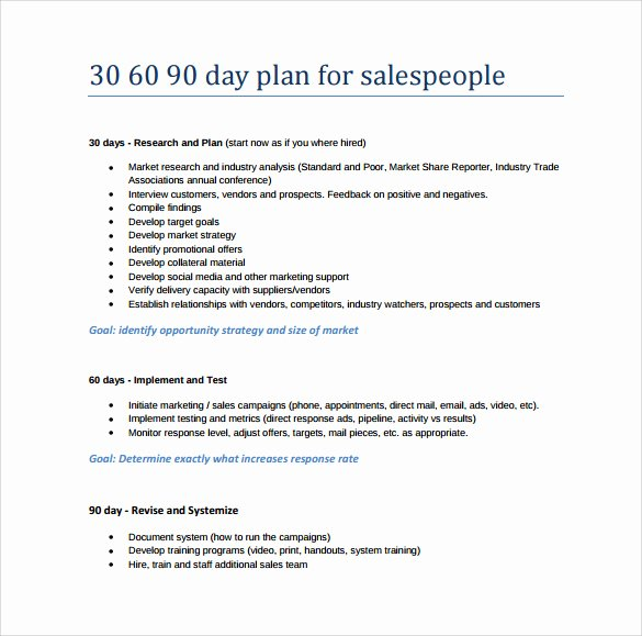 30 Day Plan Template Unique 20 30 60 90 Day Plan Samples Pdf Word