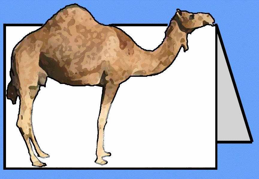 5 E's Lesson Plan Template Fresh Kissing Camels Craft