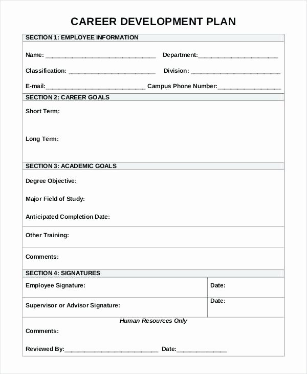 5 Year Career Plan Template Beautiful 5 Year Development Plan Template 5 Year Career Plan