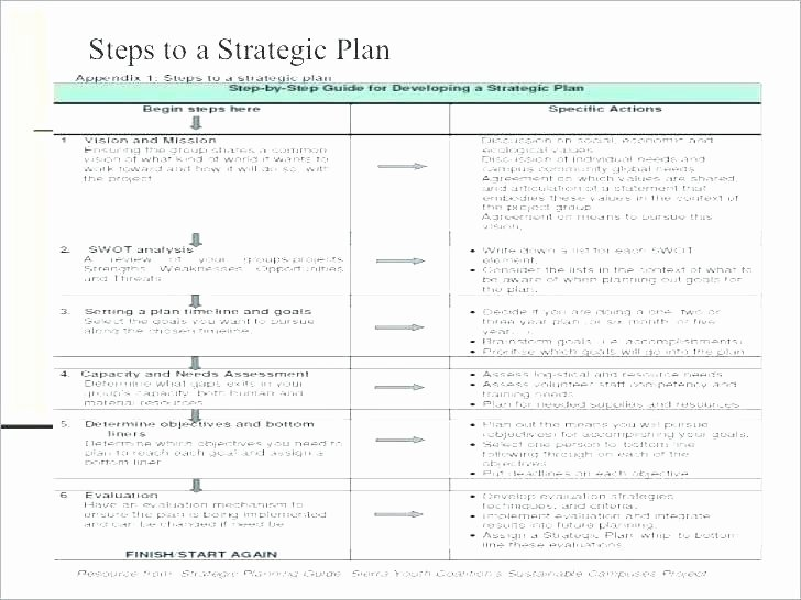 5 Year Career Plan Template Elegant Sample Five Year Plan Five Year Career Development Plan