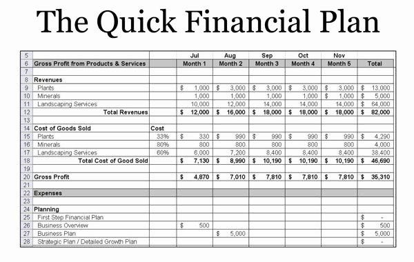 5 Year Financial Plan Template Elegant Startup Foundations Success tool 5