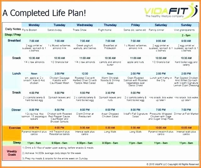 5 Year Life Plan Template Luxury Elegant Life Coach Business Plan Template Template Free