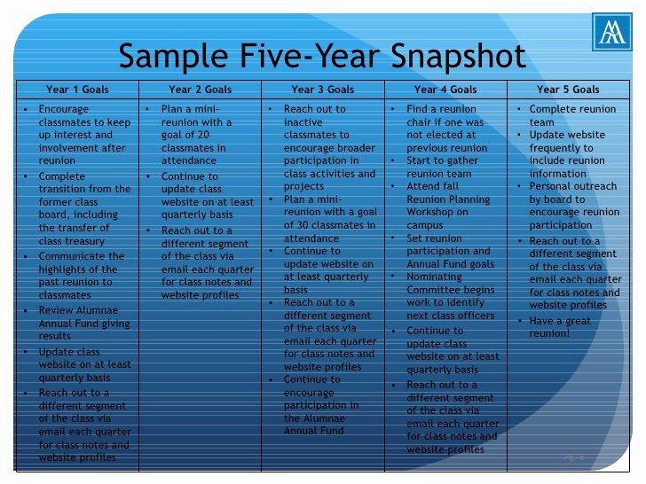 5 Year Plan Template Inspirational Alumnae Five Year Plan