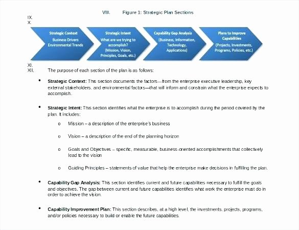 5 Year Strategic Plan Template Beautiful E Page Strategy Document Template Strategic Facility