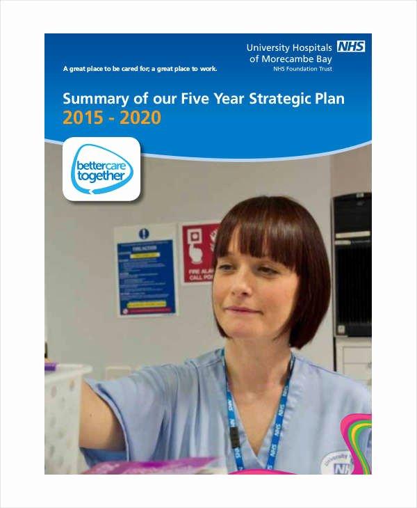 5 Year Strategic Plan Template Inspirational 39 Strategic Plan Templates In Pdf
