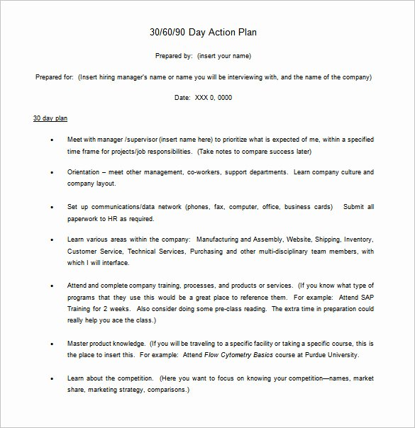 90 Day Action Plan Template Fresh 12 30 60 90 Day Action Plan Templates Doc Pdf