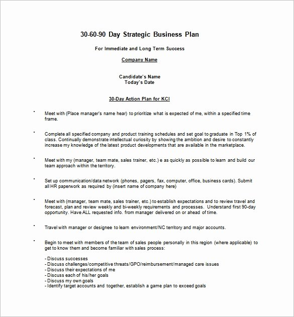 90 Day Business Plan Template Elegant 90 Day Business Plan Template Free