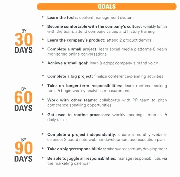 90 Day Business Plan Template Elegant Day Plan Template Business Action Examples 30 60 90 for