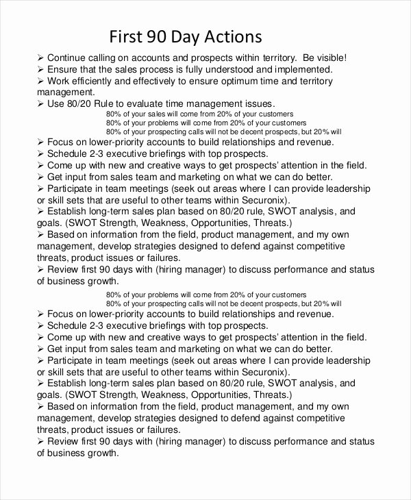 90 Day Business Plan Template Luxury 20 Business Plan Templates