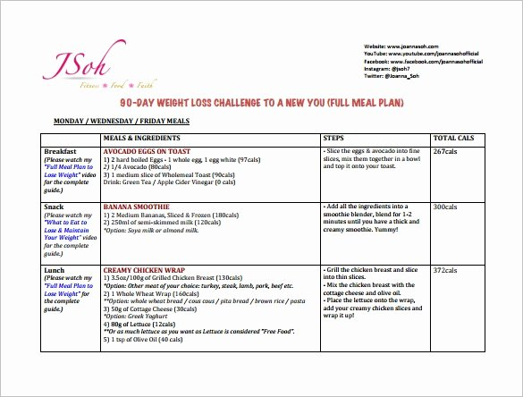 90 Day Business Plan Template New 18 90 Day Plan Templates Doc Pdf