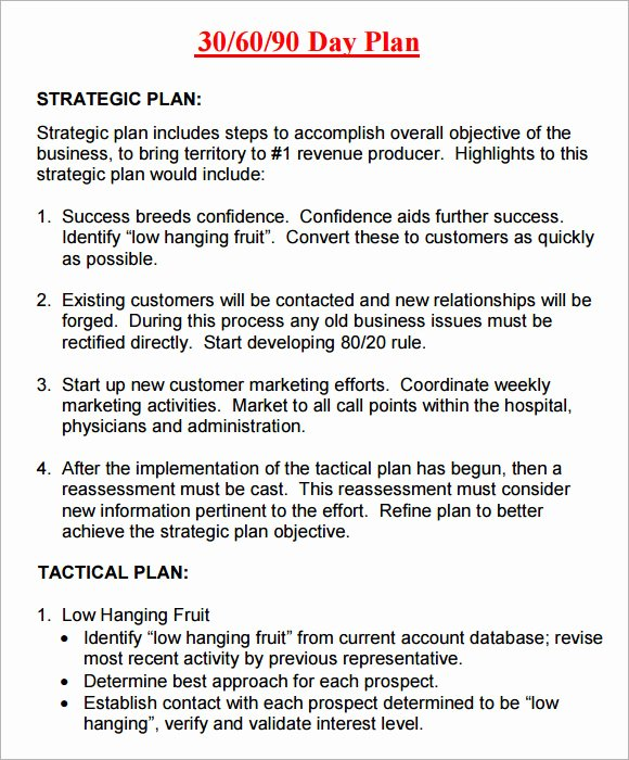 90 Day Plan Template Best Of 14 Sample 30 60 90 Day Plan Templates Word Pdf