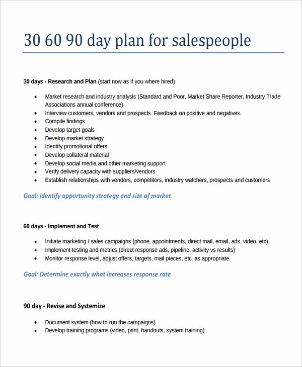 90 Day Sales Plan Template Best Of 21 30 60 90 Day Action Plan Template Free Pdf Word