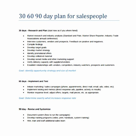90 Day Sales Plan Template Best Of 6 30 60 90 Day Sales Management Plan Template Tyroi