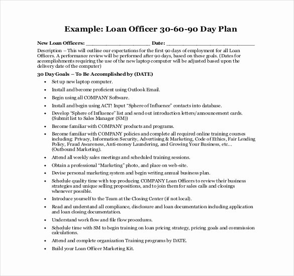 90 Day Sales Plan Template New 21 30 60 90 Day Action Plan Template Free Pdf Word