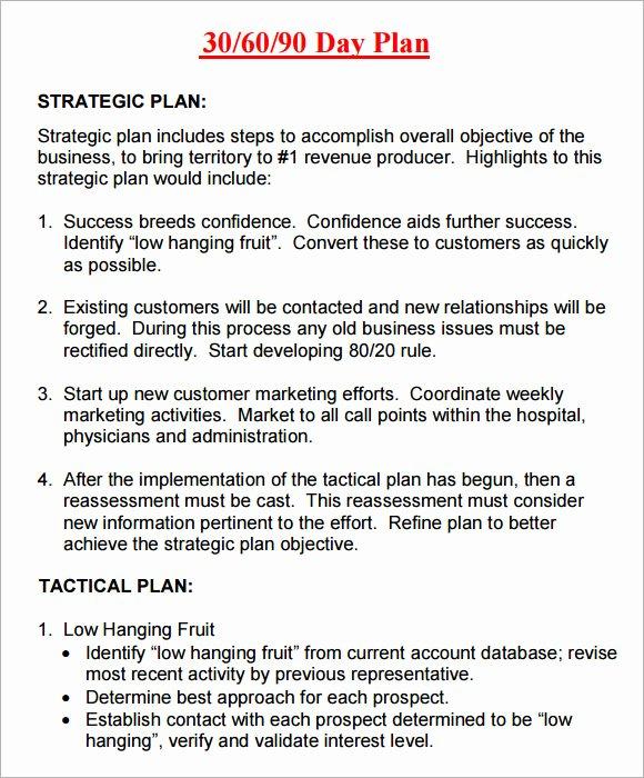 90 Days Action Plan Template Inspirational 14 Sample 30 60 90 Day Plan Templates Word Pdf