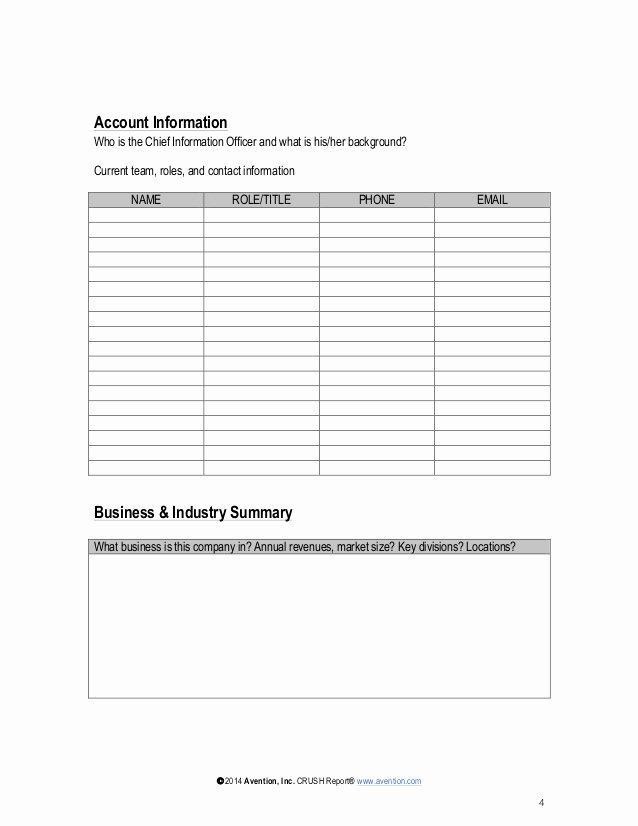 Account Management Plan Template Beautiful Strategic Account Plan Template