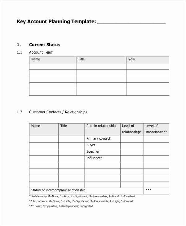 Account Management Plan Template Lovely 7 Strategic Account Plan Templates Free Sample Example