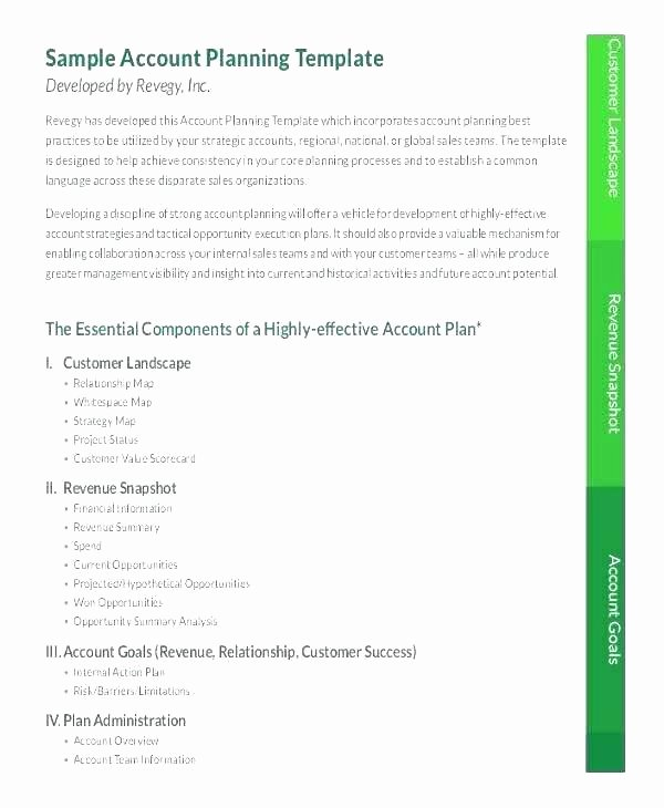 Account Management Plan Template Unique Account Management Plan Template Strategic Key Planning