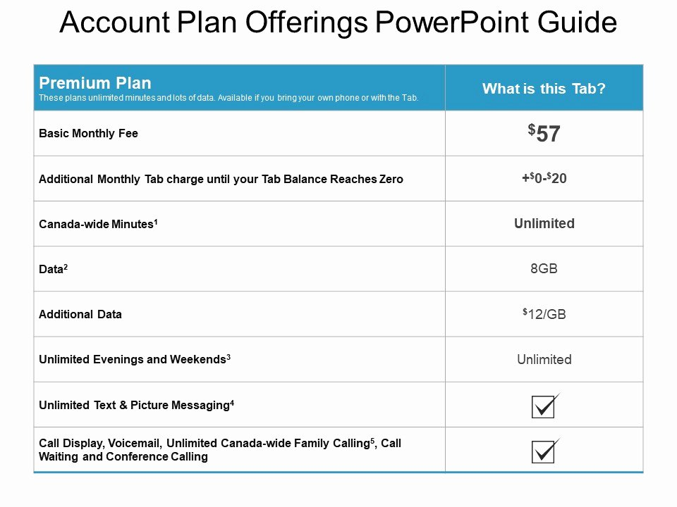 Account Plan Template Ppt Awesome Account Plan Ferings Powerpoint Guide