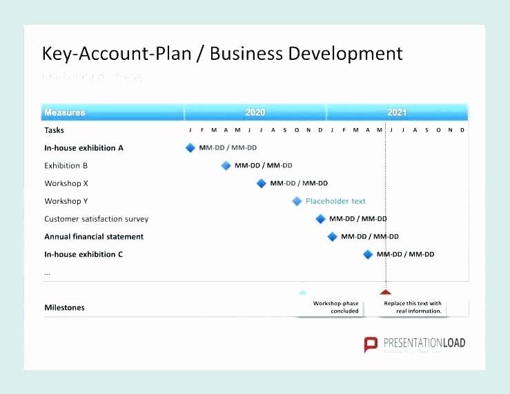 Account Plan Template Ppt Best Of Strategic Account Management Plan Template Strategic