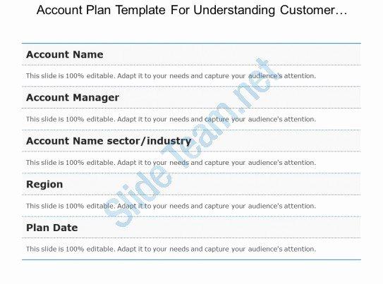 Account Plan Template Ppt Elegant Strategic Account Plan Powerpoint Slide Deck