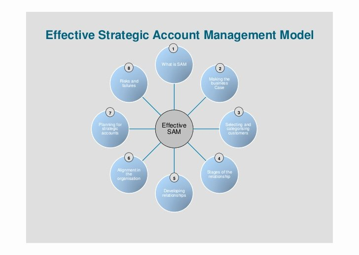 Account Plan Template Ppt New Strategic Account Management Presentation