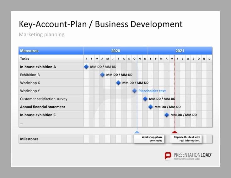 Account Plan Template Ppt Unique Account Plan Template Ppt Amsauh