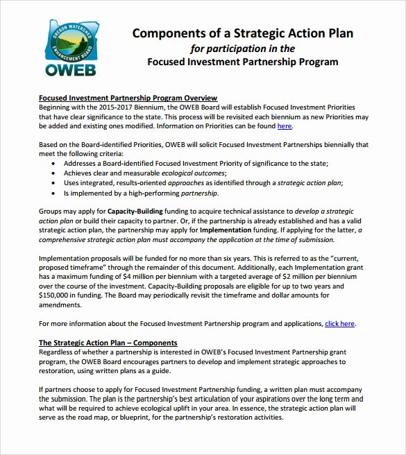 Action Plan Template Pdf Inspirational 10 Sample Strategic Action Plans