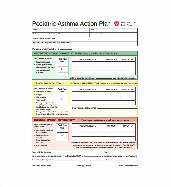 Action Plan Template Pdf Inspirational asthma Action Plan Template – 13 Free Sample Example