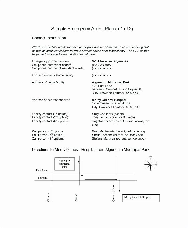 Active Shooter Response Plan Template Best Of Emergency Action Plan Template Emergency Action Plan
