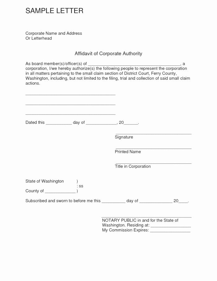 Affidavit Of Support Sample Letter Pdf Unique Affidavit Template Word Zimbabwe Templates Resume
