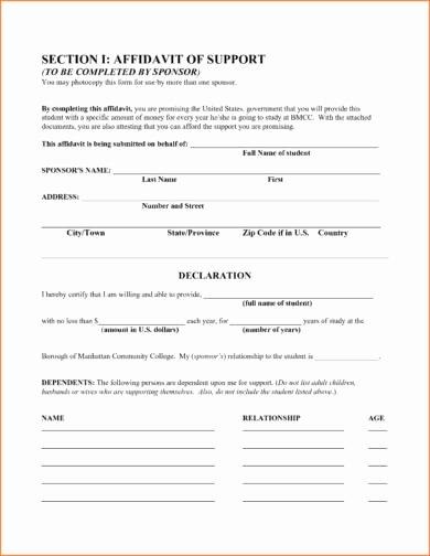 Affidavit Of Support Template Letter Lovely 29 Free Affidavit form Examples Pdf