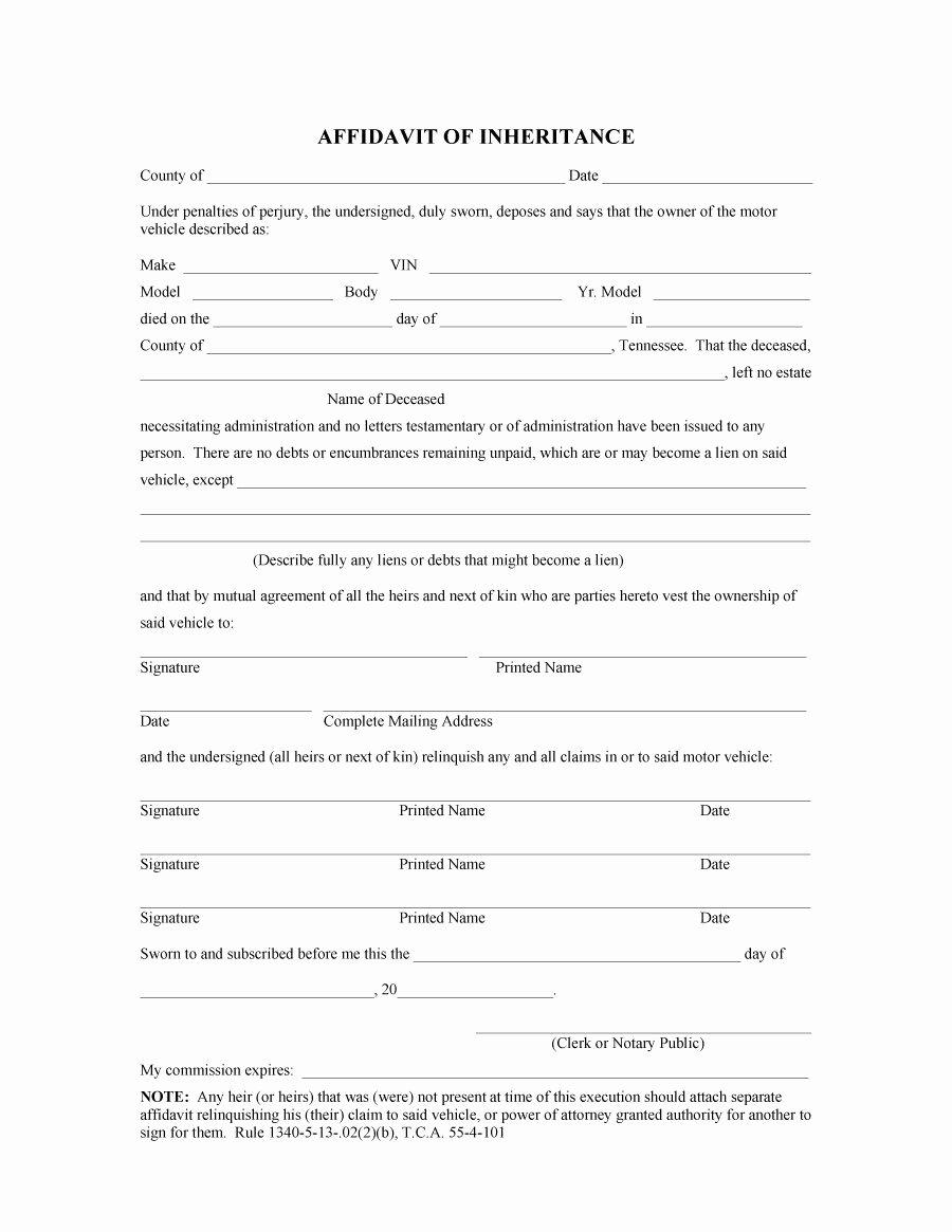 Affidavit Of Support Template Letter Luxury 48 Sample Affidavit forms & Templates Affidavit Of