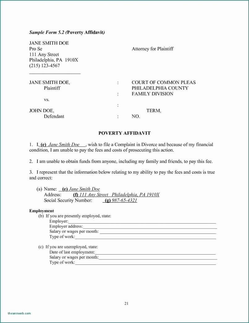 Affidavit Support Letter Elegant Affidavit Of Support Example Letters