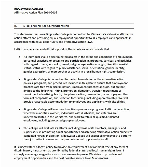 Affirmative Action Plan Template Beautiful 9 Sammple Affirmative Action Plan Templates