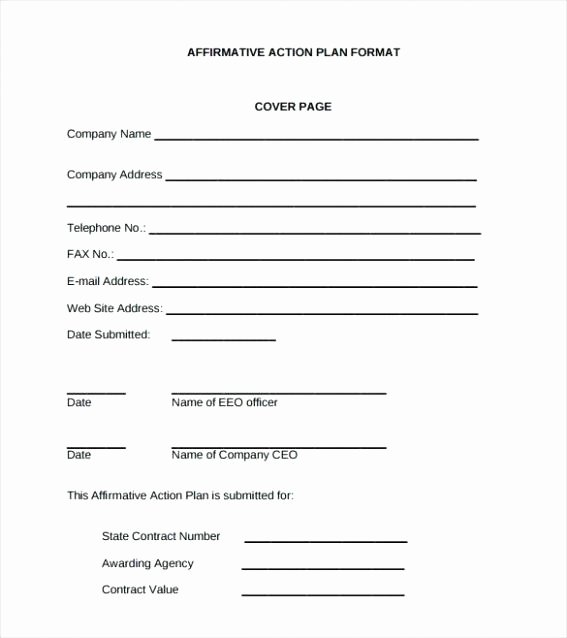 Affirmative Action Plan Template Beautiful Affirmative Action Template Affirmative Action Plan