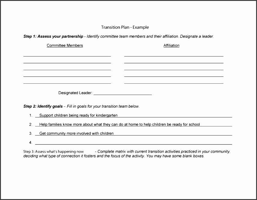 Agile Release Plan Template Awesome 5 Blank Project Plan Sampletemplatess Sampletemplatess