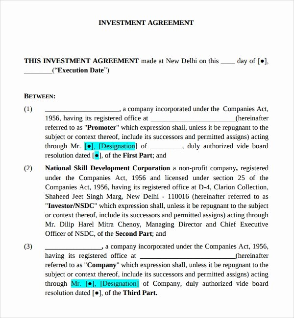 Angel Investor Proposal Template Unique Sample Investor Agreement Pdf Backuperheritage