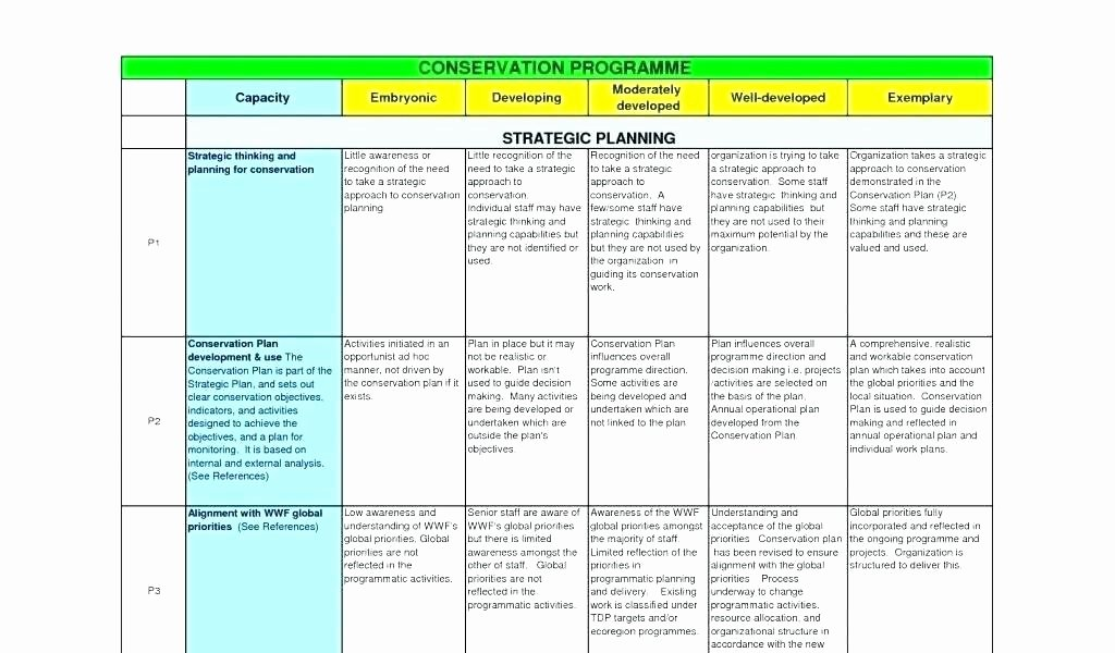 Annual Operating Plan Template Awesome Annual Operating Plan Template