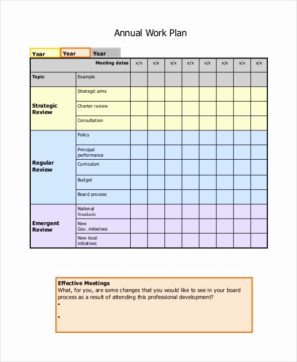 Annual Work Plan Template Elegant 8 Sample Work Plans