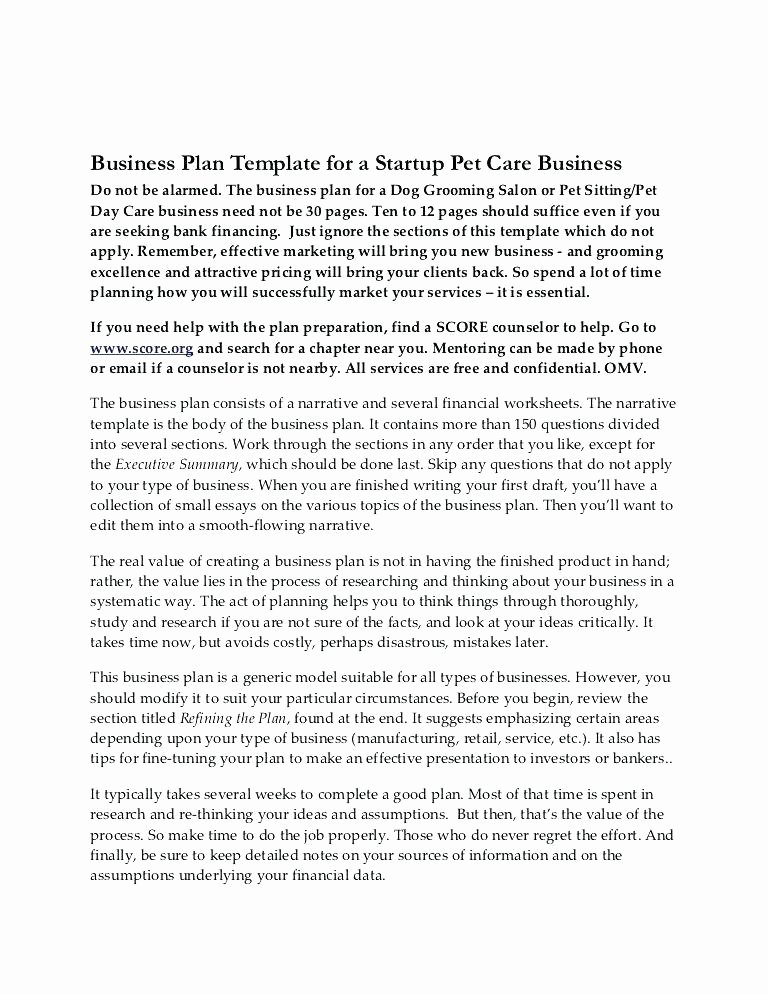 App Business Plan Template Luxury Phone App Business Plan – Blogopoly