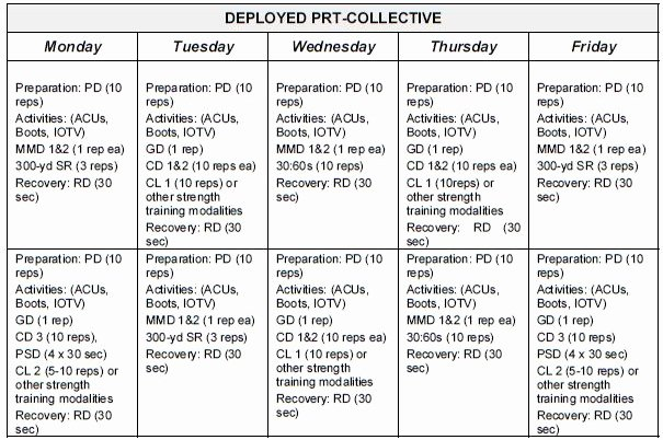 Army Pt Plan Template Awesome Sustaining Phase Prt Schedules