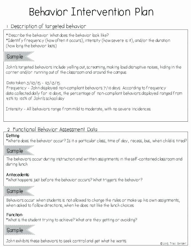 Behavior Intervention Plan Template Doc Fresh Academic Intervention Plan Template for Capable Example