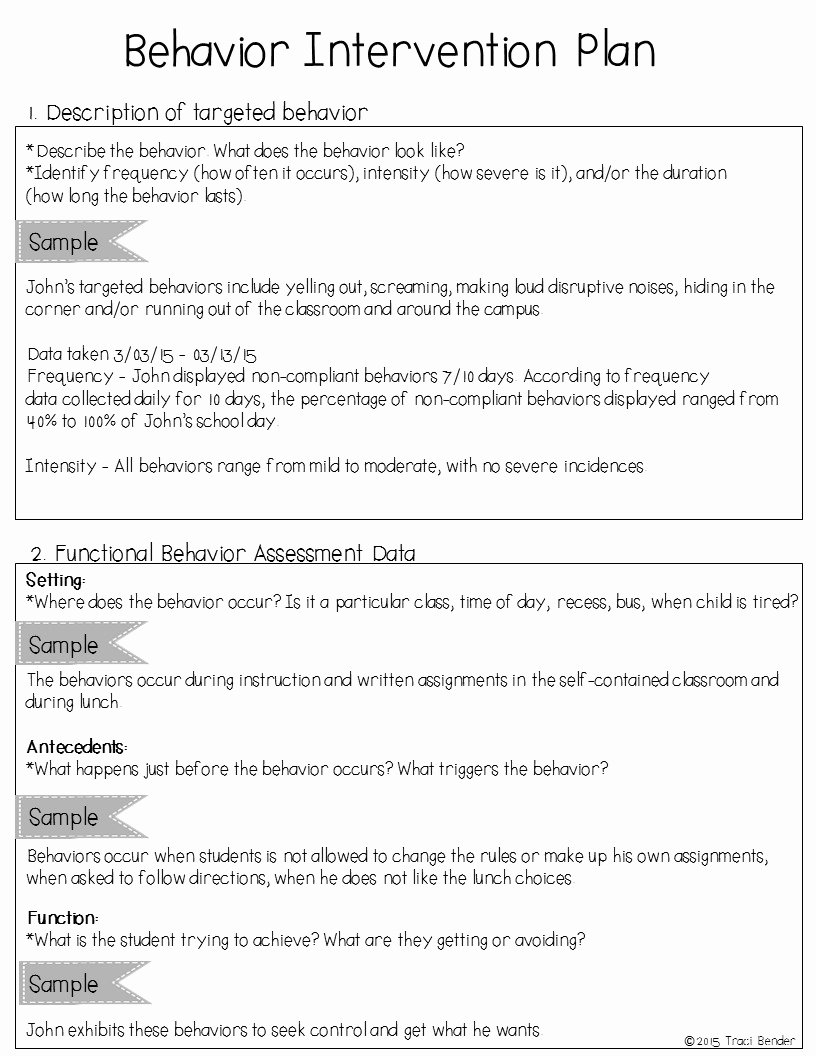 Behavior Intervention Plan Template Doc Lovely the Bender Bunch Creating A Behavior Intervention Plan Bip