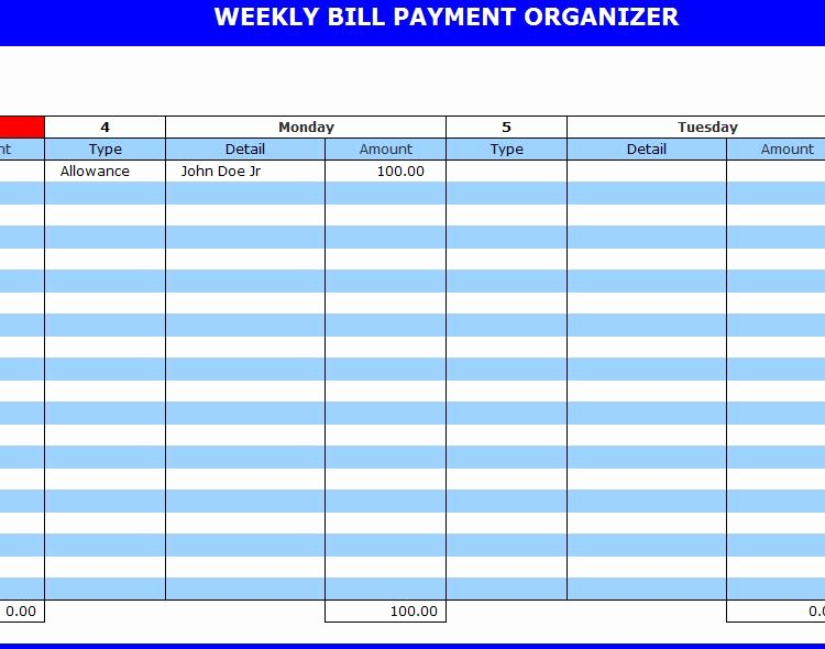 Bill Pay Template Excel Beautiful Bill Payment organizer
