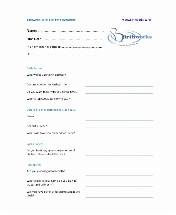 Birth Plan Template Pdf Beautiful Birth Plan Template 17 Free Word Pdf Documents