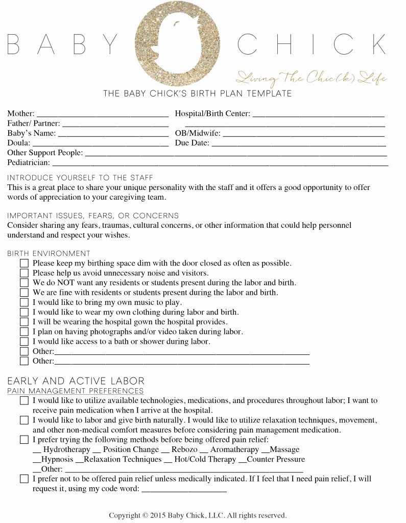 Birth Plan Template Pdf Beautiful How to Create Your Perfect Birth Plan